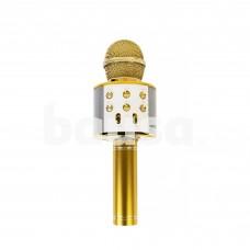 Auksinis karaokė mikrofonas - kolonėlė su balso keitimo efektais WS-858