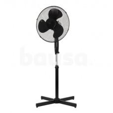 Pastatomas ventiliatorius NHC FT-531