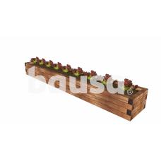 Lysvė medinė DD11 - 165,6 x 57,6 x 38 cm
