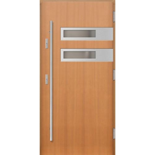 Medinės lauko durys Inox P133