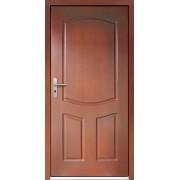 Medinės lauko durys Clasic P15