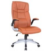 Biuro kėdė 70 x 50 x 120 cm
